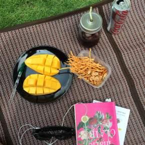 Piece of a picnic – อยู่บ้านทำอะไรดี